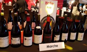 Bordò grenaches du monde 2019